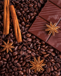 chocolates in the supply chain