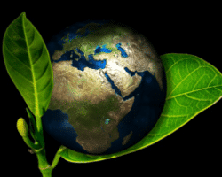 eco-responsible: Low environmental footprint