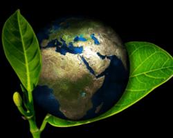eco-responsible